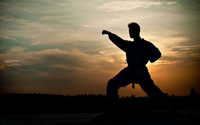 Martial Arts Wallpapers HD Pictures Download Free