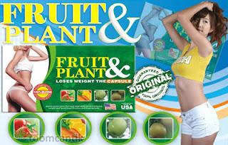 Pelangsing Fruit Plant Asli, Obat Pelangsing Badan Jakarta.INFO