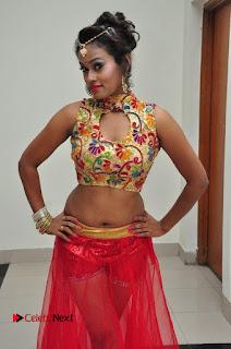 Actress Nisha Pictures at Chiranjeevi Birthday 2016 Celebrations  0024.JPG