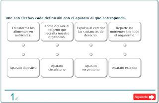 http://www.primaria.librosvivos.net/actividades/flashActividadesPrimariaPub/examen.swf?idejecucion=1618