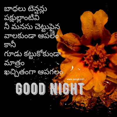 good morning quotes in telugu good morning images in telugu telugu quotes images telugu good morning quotes subhodayam images good morning in telugu images telugu quotes good morning images telugu quotations in telgu telugu good morning sms telugu quotes wallpapers subhodayam images in telugu koteshans telugu good morning telugu motivational messages