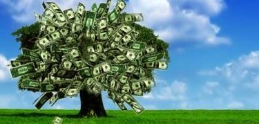 El imposible capitalismo verde ~ decrecimiento