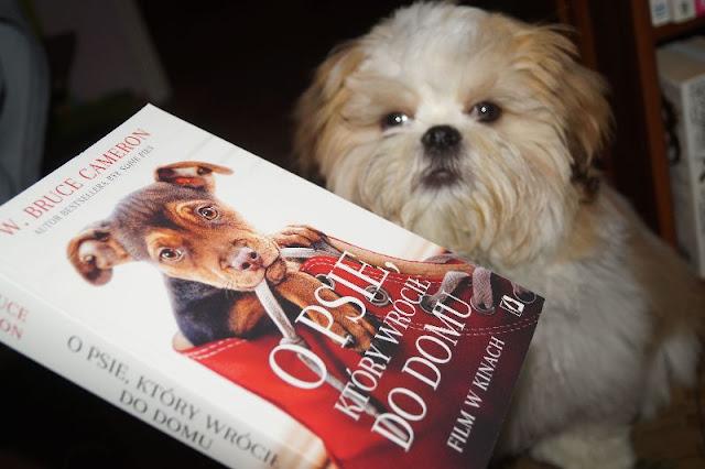 """""""O psie, który wrócił do domu"""" W. Bruce Cameron [PRZEDPREMIEROWO]"""