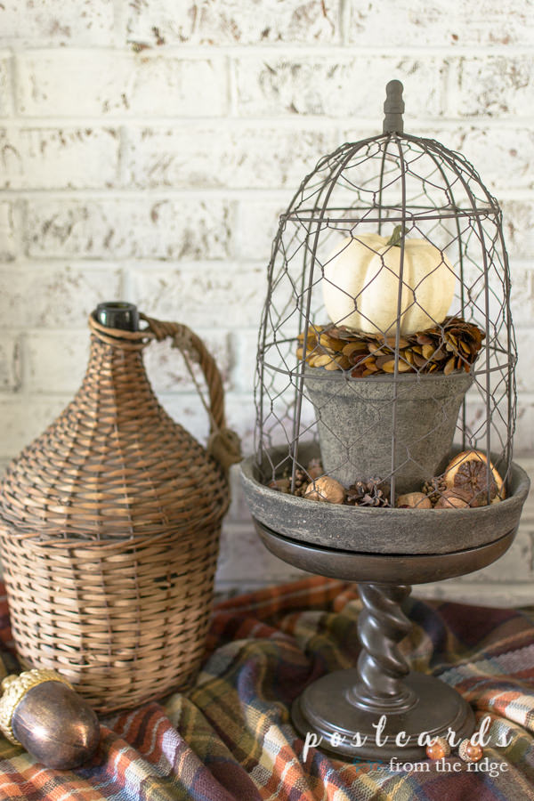 wicker demijohn and planter with chicken wire cloche decorated for fall