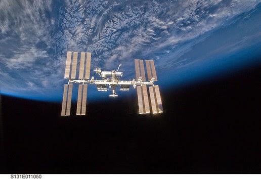 tepatnya di permukaan Stasiun Luar Angkasa Internasional Plankton Laut Ditemukan Hidup Di Luar ISS