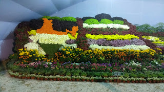 JAMSHEDPUR FLOWER SHOW SAVE WATER PHOTO  INDIA