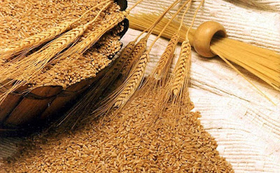 New Delhi, Wheat, Price of Wheat, wheat prices in Delhi, Food Corporation of India, FCI, Open Market Sale Scheme, OMSS