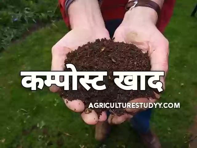कम्पोस्ट खाद (Compost meaning in hindi) क्या है, यह कैसे बनाई जाती है।