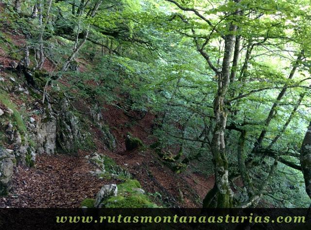 Ruta circular de Taranes al Tiatordos: Fayedo Formistaña
