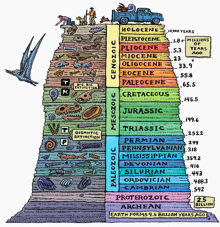 Image result for geologic time scale
