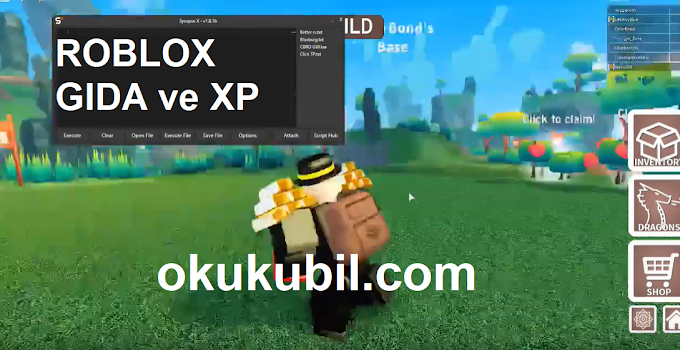 Roblox Dragon Adventures GIDA ve - XP Script Hilesi İndir