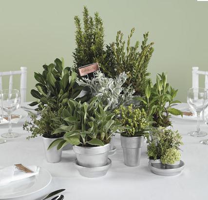 Herbacious Tabletop