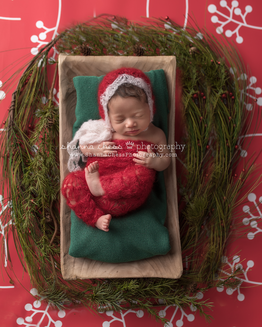 eugene oregon studio newborn photography