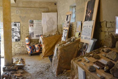 museo botroidi