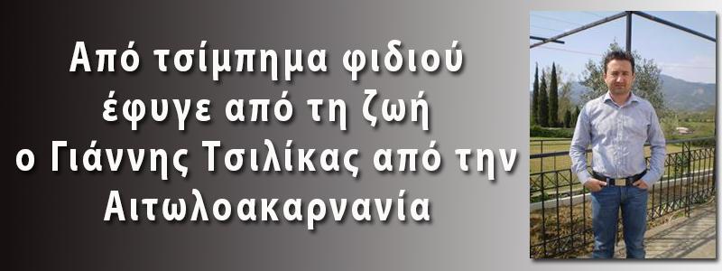 ΓΙΑΝΝΗΣ ΤΣΙΛΙΚΑΣ
