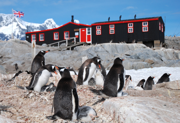 Interesting facts about Penguin post office