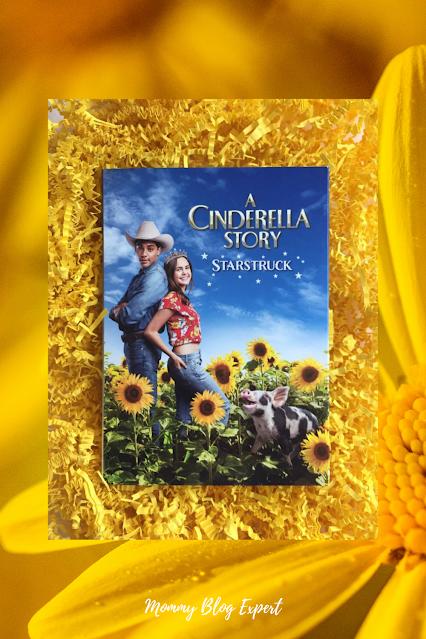 A Cinderella Story Starstruck 2021 DVD Kids Movie Warner Bros