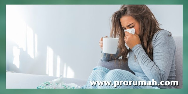 Manfaat Daun Bidara - untuk meredakan demam