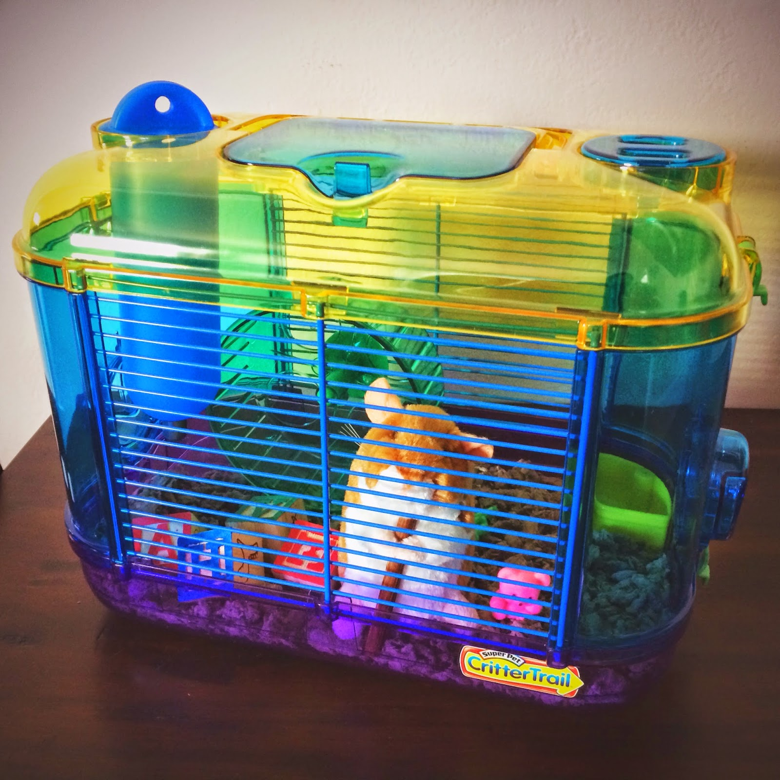 Karma Continued How To Throw A Hamster Birthday