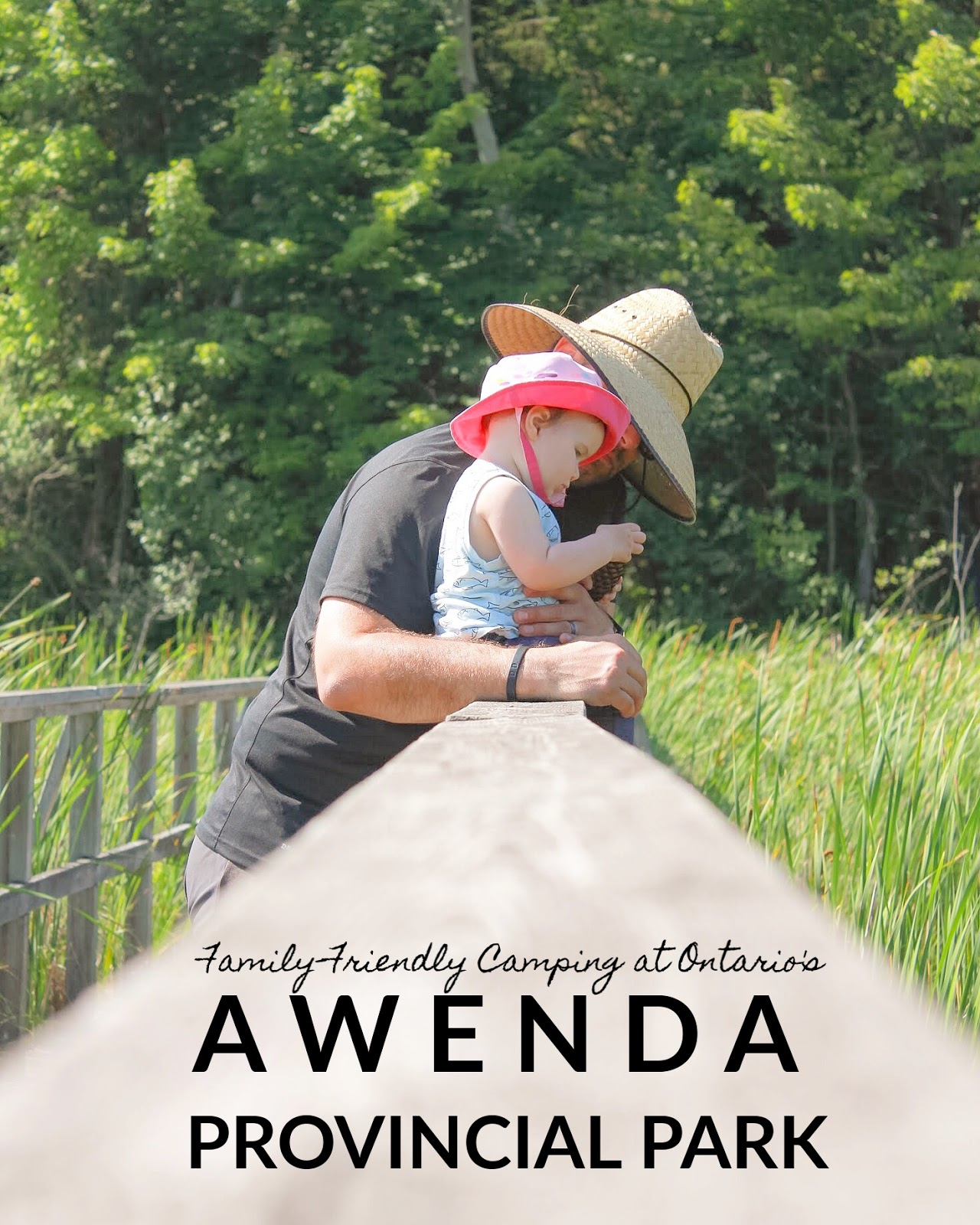 Family Friendly Camping at Ontario's Awenda Provincial Park