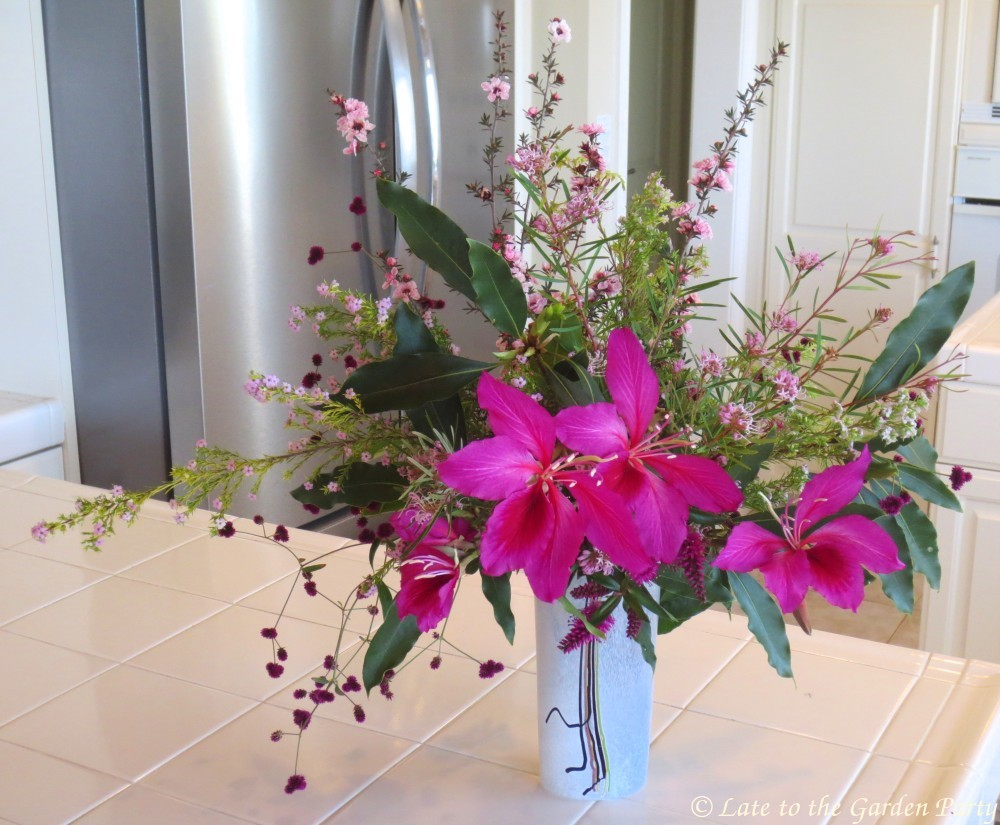 Late to the garden party in a vase on monday valentines day pinks the flowers of the hong kong orchid tree bauhinia x blakeana werent the starting point for this vase but the smaller softer flowers called out for a mightylinksfo Choice Image
