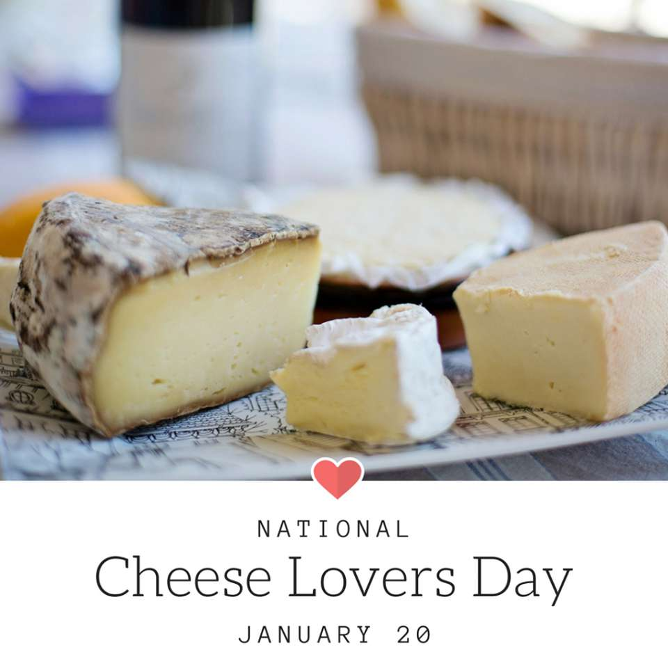 National Cheese Lover's Day Wishes Unique Image