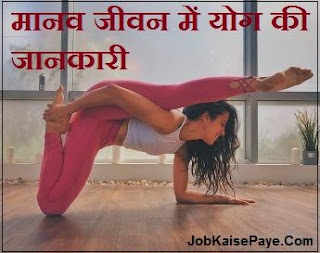 What is the importance of yoga in human life