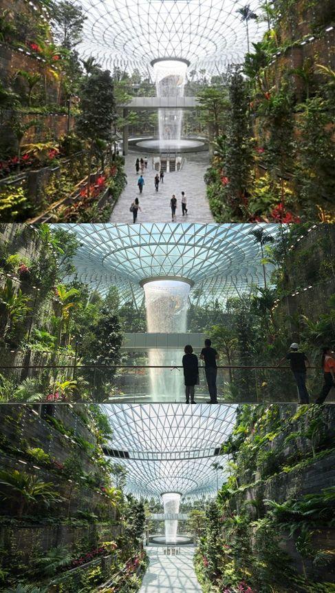 rośliny w budynkach