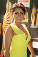 Madhu Shalini Looks Super Cute in Neon Green Deep Neck Dress at IIFA Utsavam Awards 2017  Day 2  Exclusive (32).JPG