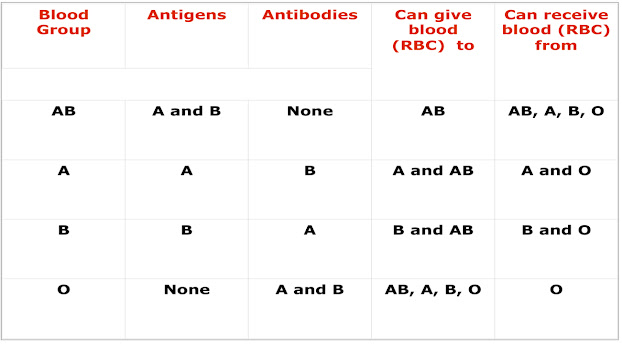 The ABO blood groups are the most important in clinical transfusion practice