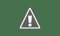 佐賀のお米、さがびより