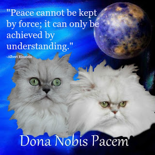 http://sweetpurrfections.blogspot.com/2015/11/dona-nobis-pacem.html