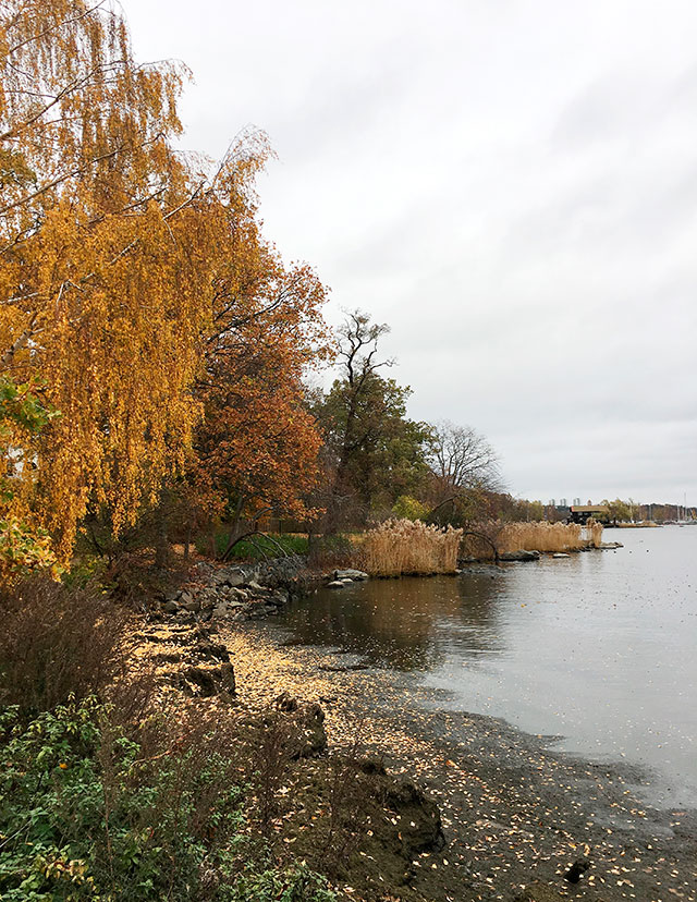 otoño_estocolmo