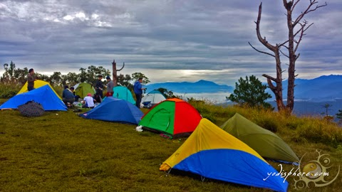 Colorful camping tents at the summit campsite of Mt. Ugo in Benguet hover_share