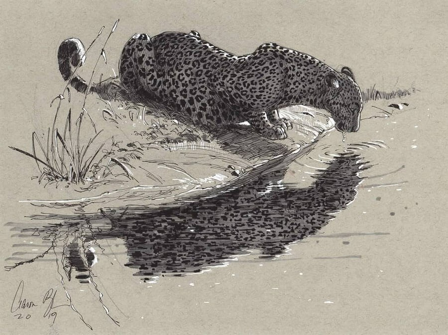 01-Leopard-Reflection-Aaron-Blaise-www-designstack-co