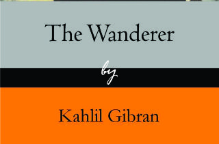 The wanderer half book cover