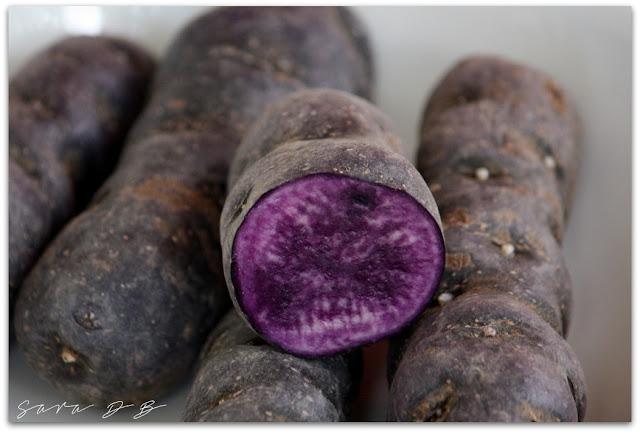 Vitelotte, potato, France