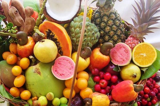 Fruticultura em debate na cidade do Crato