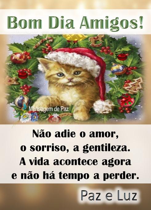 Não adie o amor,   o sorriso, a gentileza.  A vida acontece agora   e não há tempo a perder.  Paz e Luz!  Bom Dia Amigos!