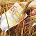 Την ερχόμενη εβδομάδα θα λάβουν τις επιδοτήσεις οι αγρότες