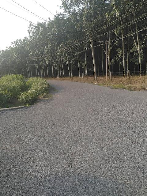 Nền đẹp đường Khai thác đá dẫn vào sân bay Long Thành, xã Long An, Long Thành