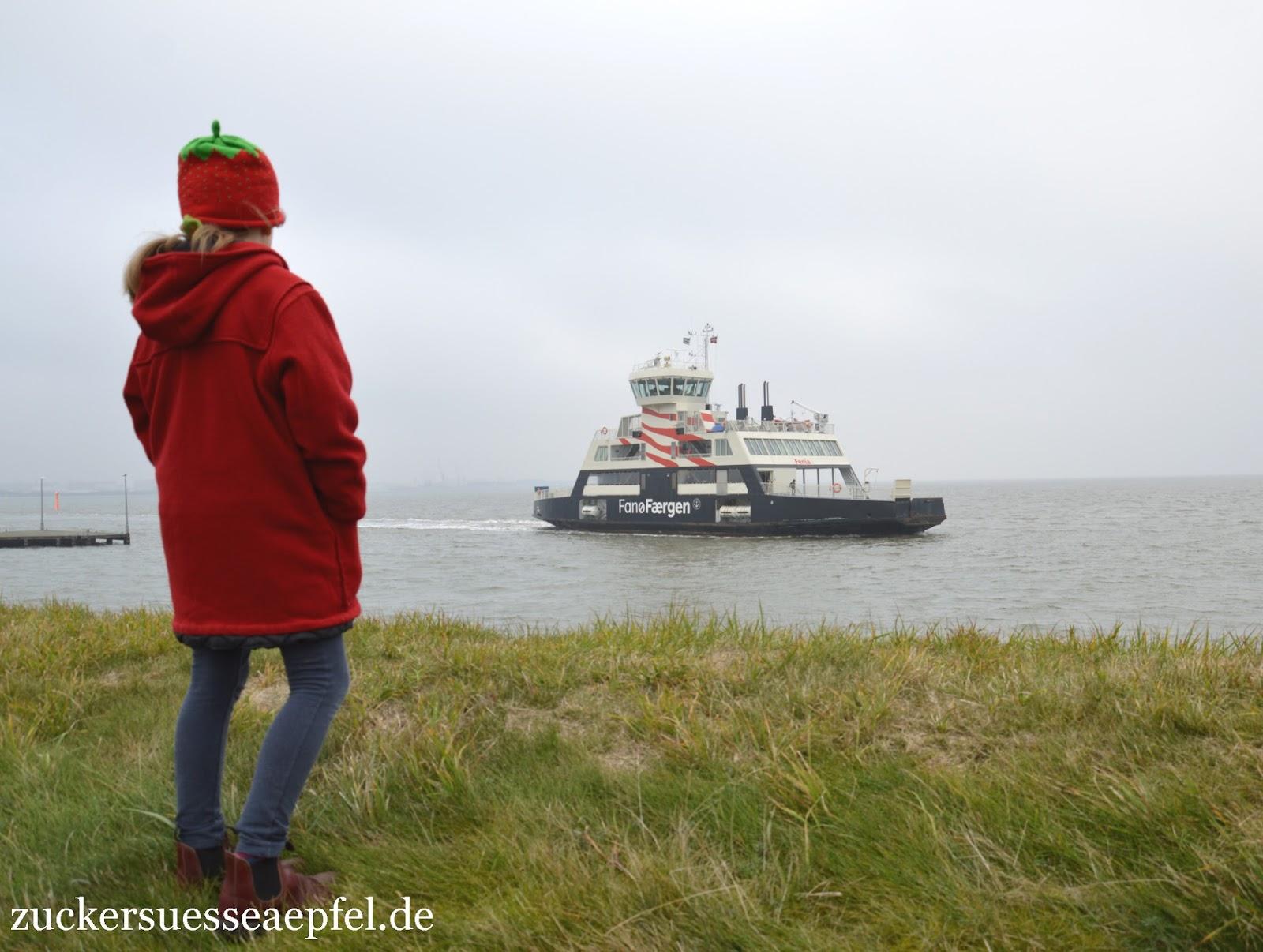 Die dänische Insel Fan¸ mit unserem Ferienhaus erster Teil
