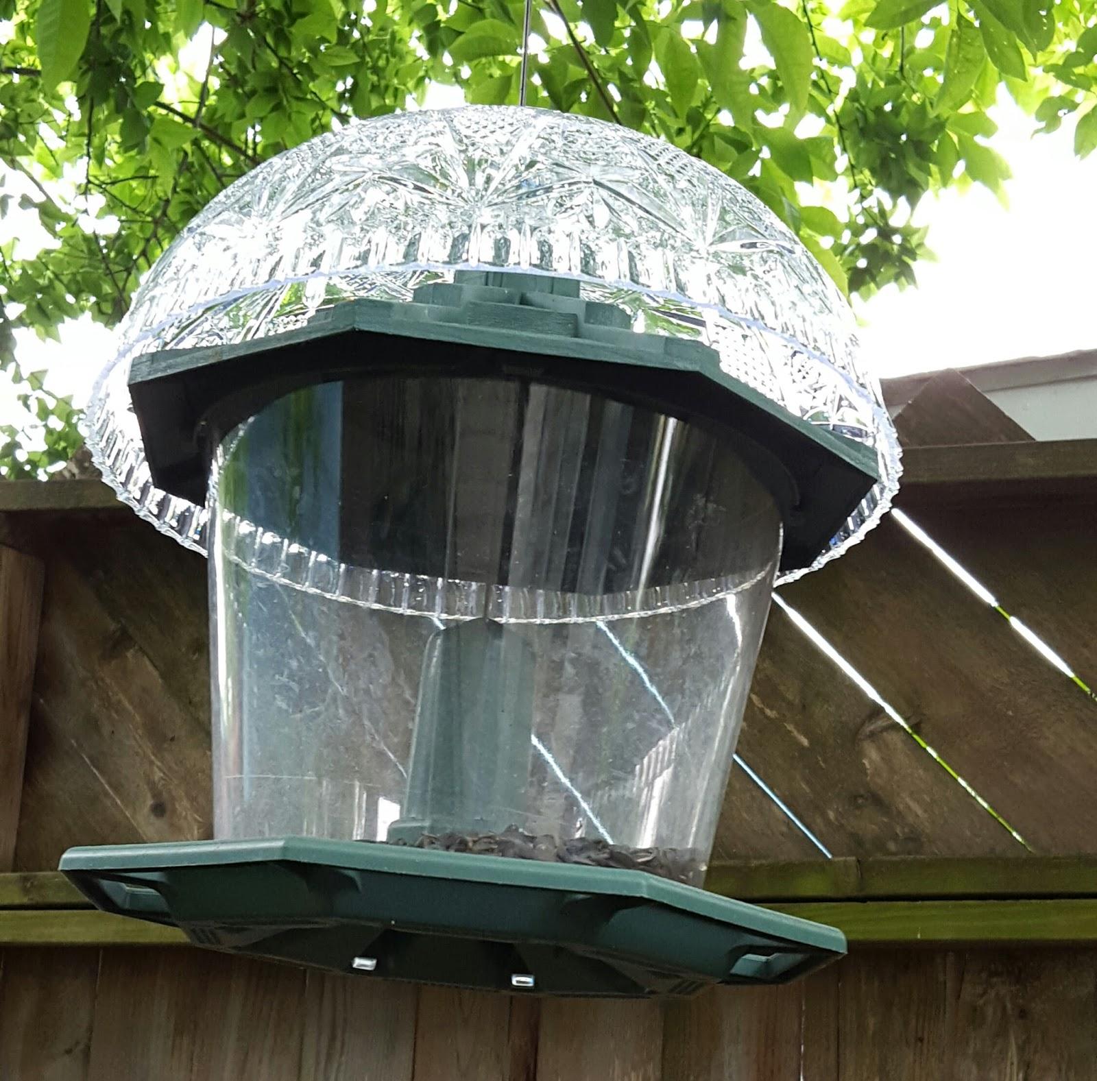 buy window feeder platform hanging open frame bird feeders