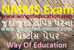 NMMS Different Topics Practice Paper By Way Of Education - www.wingofeducation.com