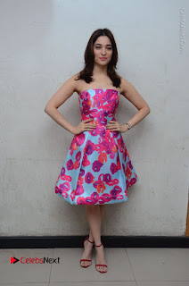 Actress Tamanna Latest Images in Floral Short Dress at Okkadochadu Movie Promotions  0179.JPG