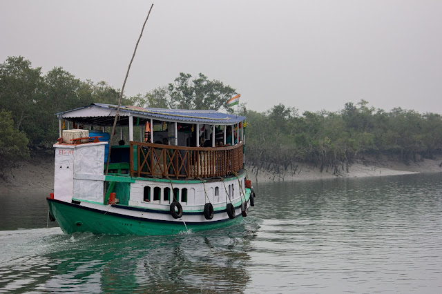 boats in sunderbans