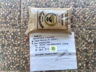 Benih pesanan SAPNAH Karawang, Jabar.    (Sebelum Packing)