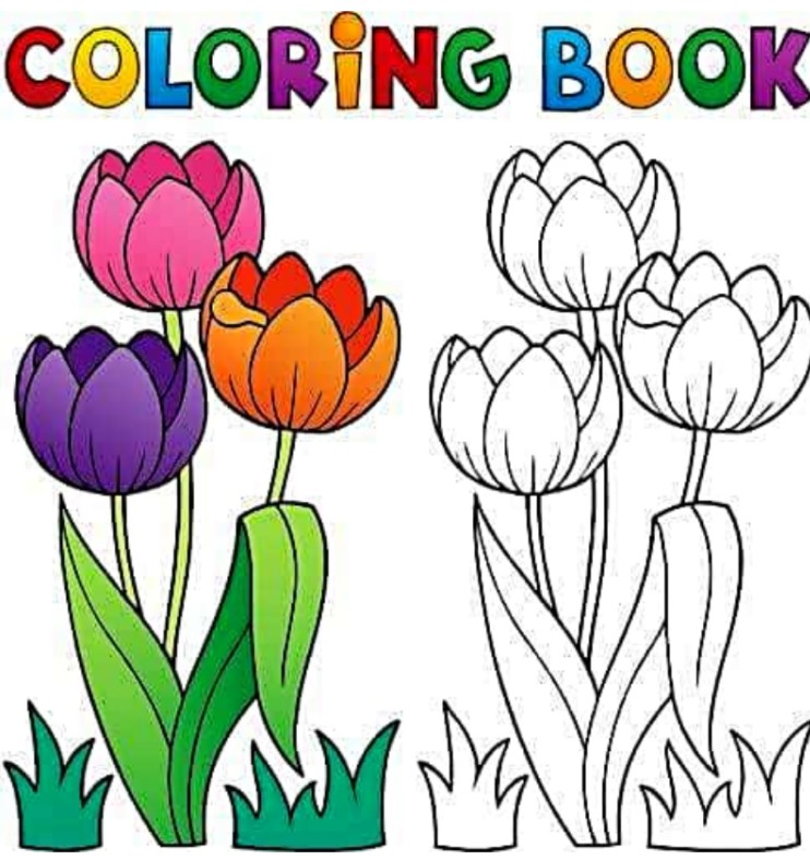 Online Colouring Game for Students