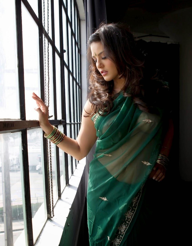 Sunny Leone Saree Sexy Video