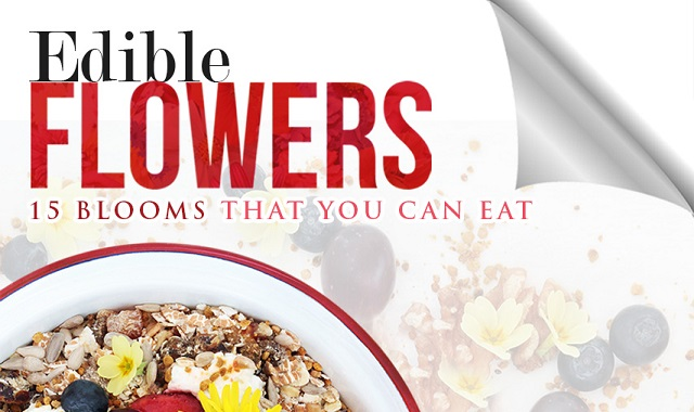 Edible Flowers: 15 Blooms that You Can Eat #infographic